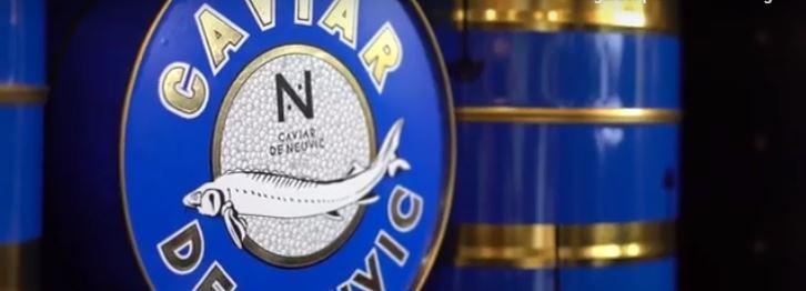 caviar de neuvic ecole de commerce bordeaux
