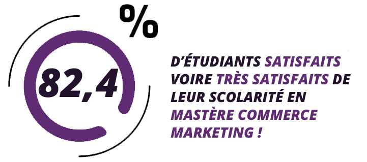 master marketing bordeaux