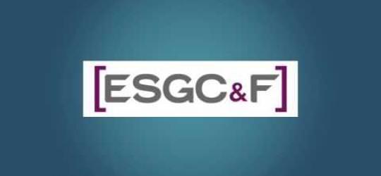 ESGC&F Toulouse - Carte de voeux 2013